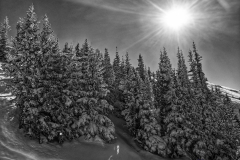 #goldhill lift #trees on the right #photooftheday #day25 with Andrew Weber and friends
